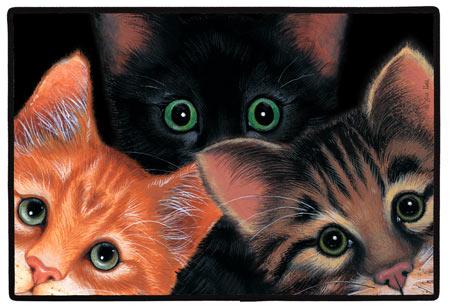 Cat Doormats